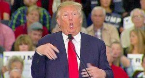Democrats Plan to Scrutinize Trump's Mental Health