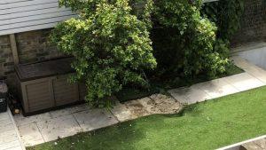 Body of suspected stowaway found in garden
